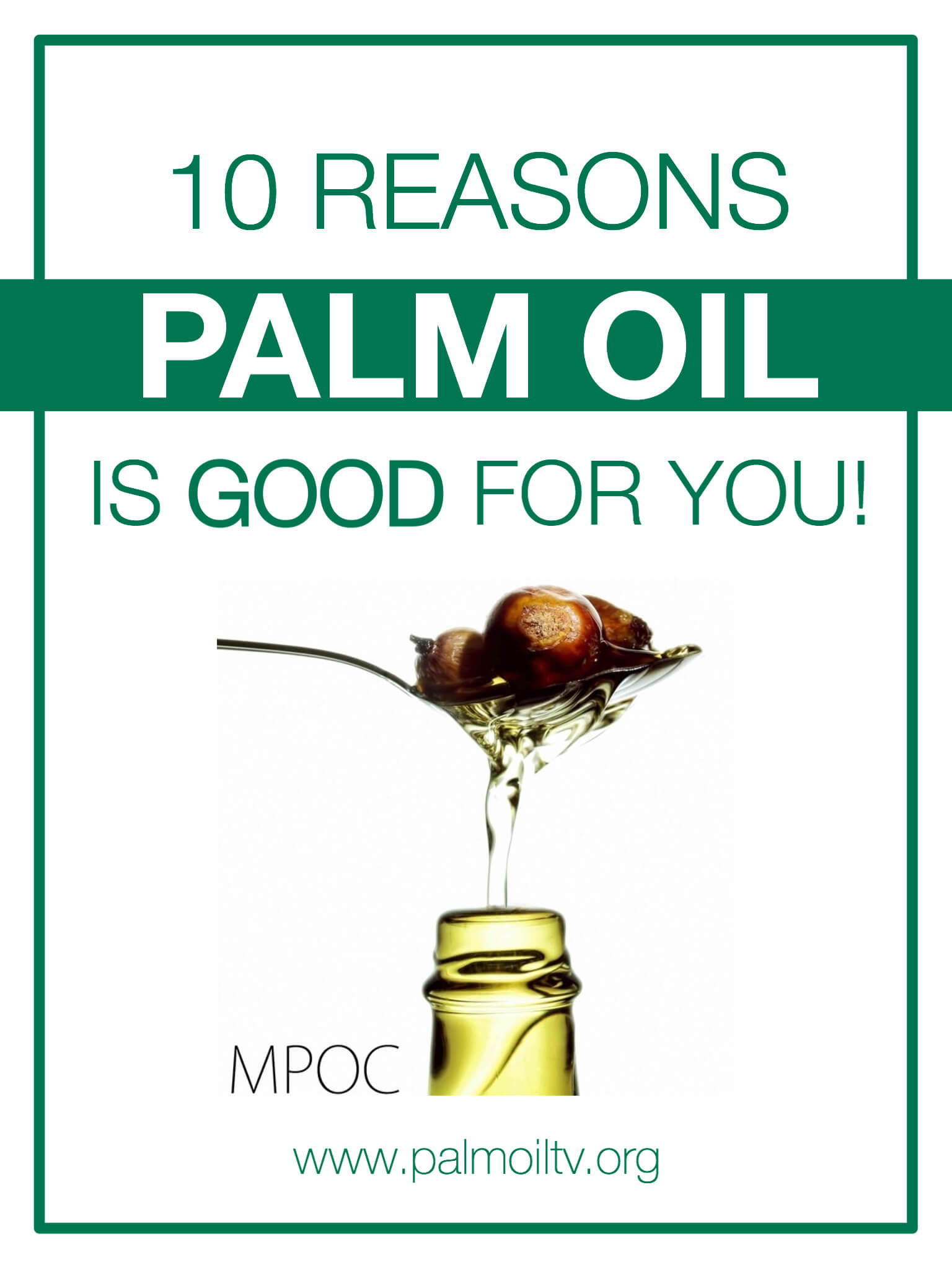 Malaysian Palm Oil Palm Oil TV