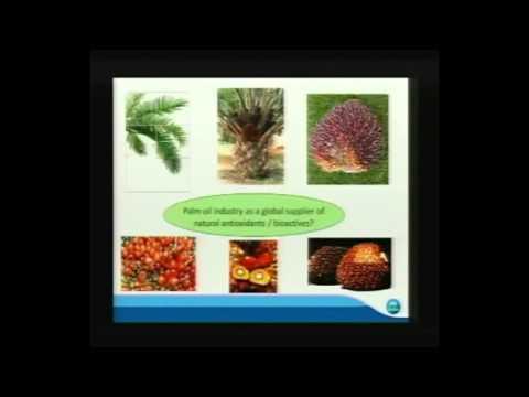 NUTRICON 2013: Dr Mahinda Abeywardena on Oil Palm Phenolics