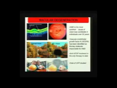 PINC 2013: Oil Palm Phenolics by Dr Ravigadevi
