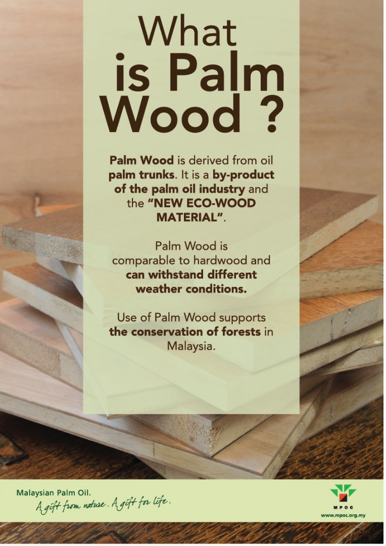 what is palm wood