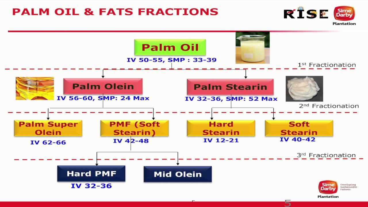 Malaysian Palm Oil International Chef Conference 2016: Palm Oil & Fat Fractions
