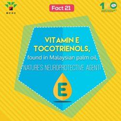 Fact 21