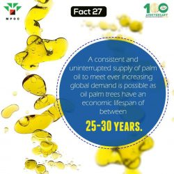 Fact 27