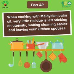 Fact 42