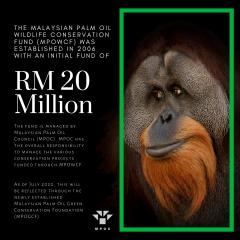 potv-palm-facts-3
