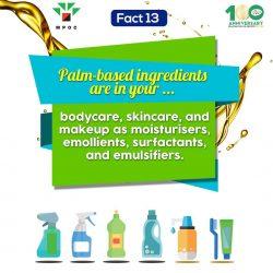 Fact 13