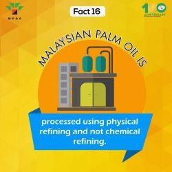 Fact 16