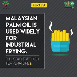 Fact 19