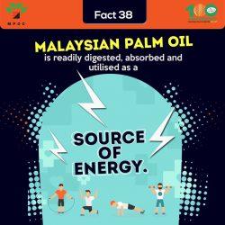 Fact 38