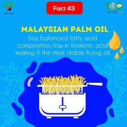 Fact 43