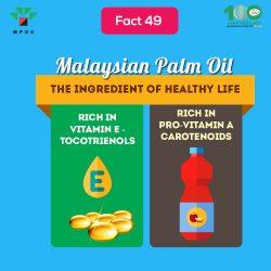 Fact 49