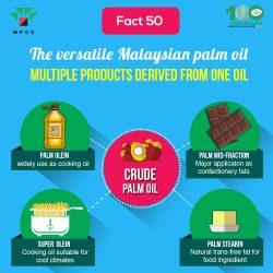 Fact 50