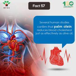 Fact 57
